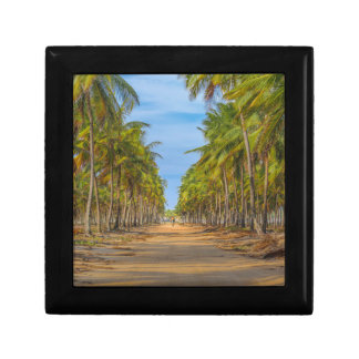 Earth Topical Road Porto Galinhas Brazil Gift Boxes