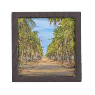 Earth Topical Road Porto Galinhas Brazil Premium Gift Boxes