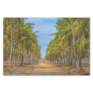 Earth Topical Road Porto Galinhas Brazil Tissue Paper