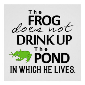 Earth Wisdom - The Frog Does Not Drink Up... Poster