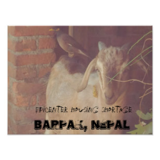 earthquake at Barpak, Nepal Poster