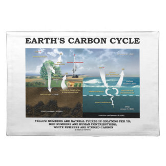Earth's Carbon Cycle (Earth Science) Placemat