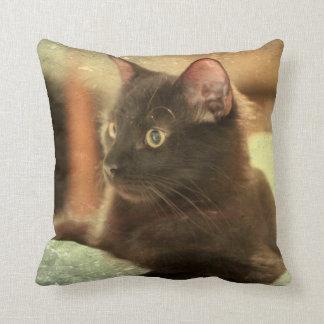 Earthtones Black Cat on Stone Background Throw Pillow