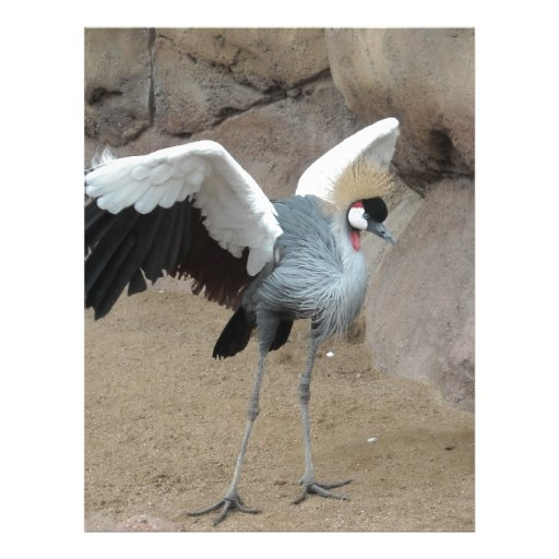 East African Crowned Crane Customized Letterhead