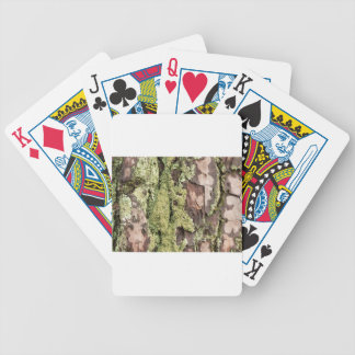 East Coast Pine Tree Bark Wet From Rain with Moss Bicycle Playing Cards