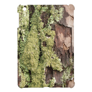 East Coast Pine Tree Bark Wet From Rain with Moss Case For The iPad Mini