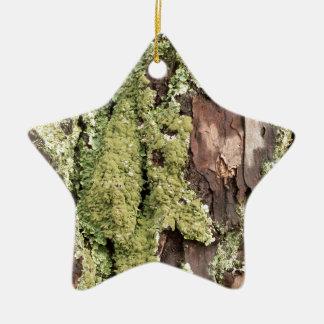 East Coast Pine Tree Bark Wet From Rain with Moss Ceramic Star Ornament