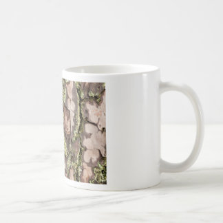 East Coast Pine Tree Bark Wet From Rain with Moss Coffee Mug
