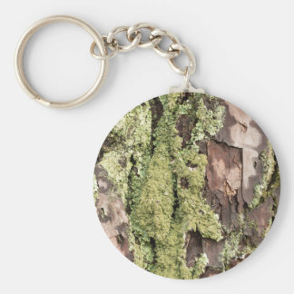 East Coast Pine Tree Bark Wet From Rain with Moss Keychain