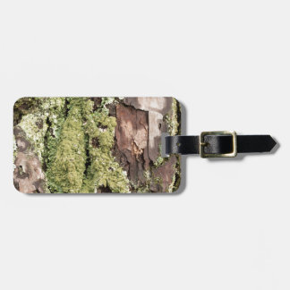 East Coast Pine Tree Bark Wet From Rain with Moss Luggage Tag