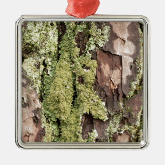 East Coast Pine Tree Bark Wet From Rain with Moss Metal Ornament