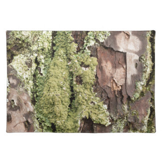 East Coast Pine Tree Bark Wet From Rain with Moss Place Mats