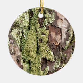 East Coast Pine Tree Bark Wet From Rain with Moss Round Ceramic Ornament