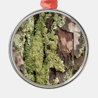 East Coast Pine Tree Bark Wet From Rain with Moss Silver-Colored Round Ornament