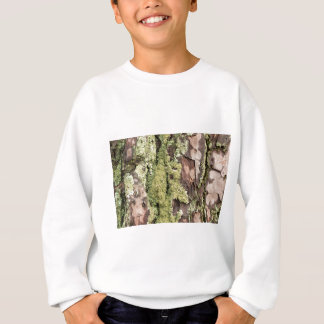 East Coast Pine Tree Bark Wet From Rain with Moss Sweatshirt