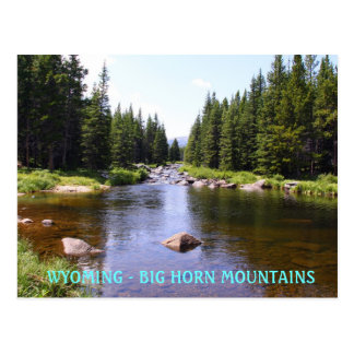 East Fork Big Goose, WYOMING - BIG HORN MOUN... Postcard