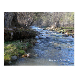 East Fork, Hayfork Creek... Postcard