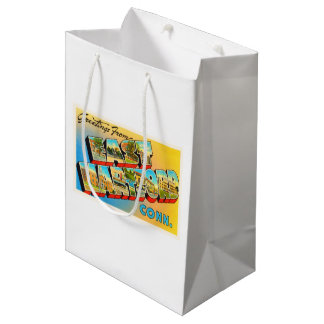 East Hartford Connecticut CT Old Travel Souvenir Medium Gift Bag