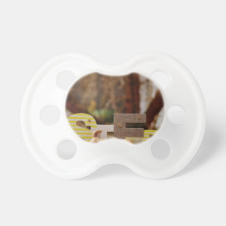 Easter- #4 baby pacifier