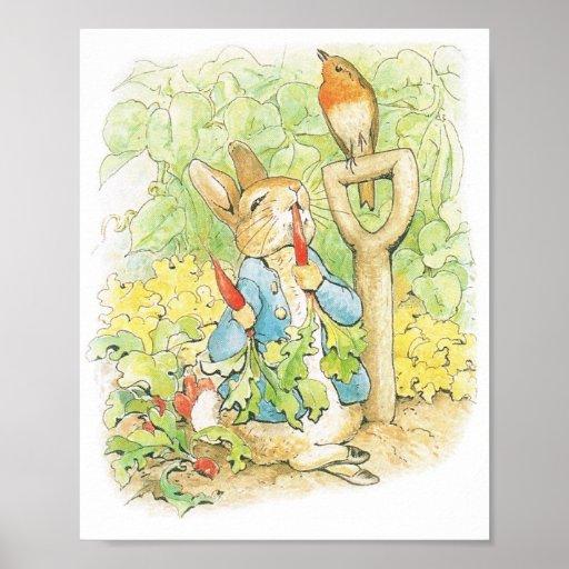 Easter, Baby Shower Rabbit Poster