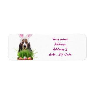 Easter Basset Hound