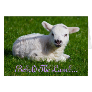 Easter Behold the Lamb Cards