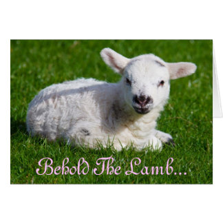 Easter Behold the Lamb I Cards