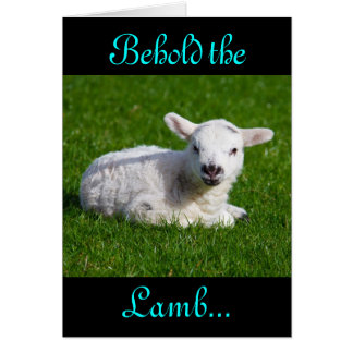 Easter Behold the Lamb IV Cards