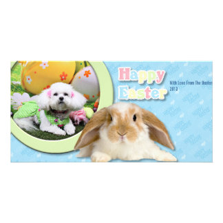 Easter - Bichon Frise - Mia Picture Card