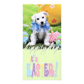 Easter - Bichon Frise X - Sammy Custom Photo Card