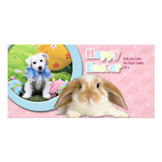 Easter - Bichon Frise X - Sammy Picture Card