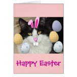 Easter Black & White Cat Greeting Cards