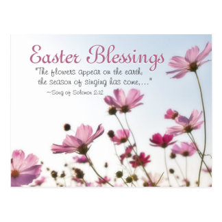 "Easter Blessings Bible Verse ""The flowers appear"" Postcard"