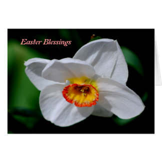 Easter Blessings Card