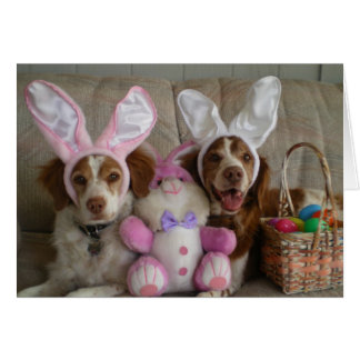 EASTER BRITTANYS CARD