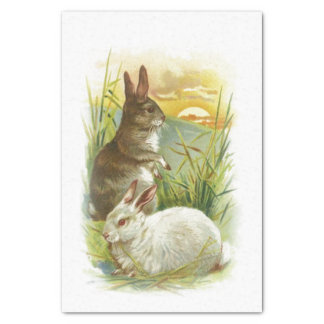 Easter Bunnies at Sunrise Tissue Paper
