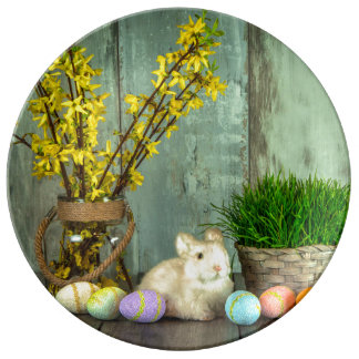 Easter Bunny and Egg Scene Porcelain Plates
