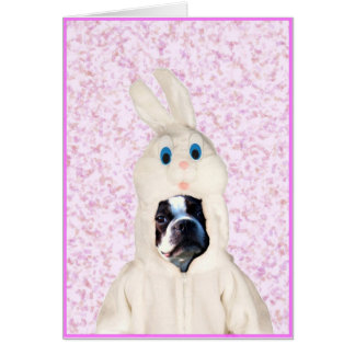 Easter bunny boston terrier greeting card