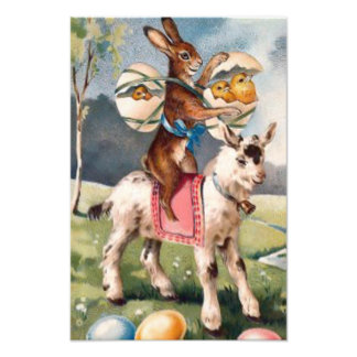 Easter Bunny Chick Colored Painted Egg Goat Art Photo