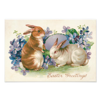 Easter Bunny Colored Egg Forget-Me-Not Photo Print