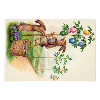 Easter Bunny Colored Egg Tree Photo Art