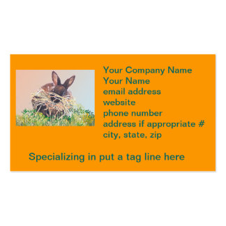 Easter Bunny or Nest Making Rabbit - Happy Easter Pack Of Standard Business Cards