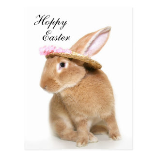 Easter Bunny s bonnet Postcard