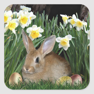 Easter Bunny Square Sticker