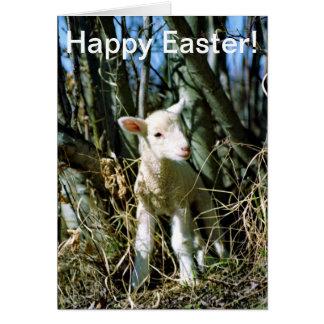 Easter Card - Lamb