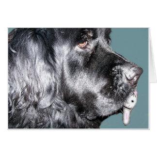 Easter Card,Newfoundland Dog Card
