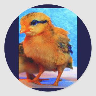 Easter Chick-A-Dee-Light Classic Round Sticker