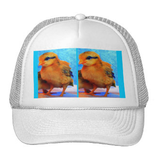Easter Chick-A-Dee-Light Trucker Hats