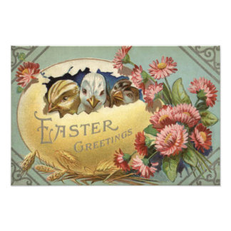 Easter Chick Chrysanthemum Colored Egg Photo