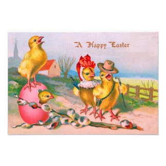 Easter Chick Colored Egg Cotton Photo Print